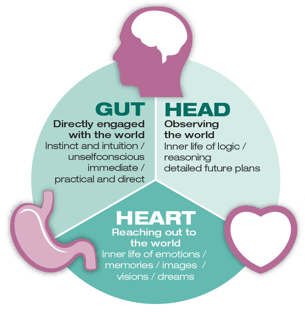 gut, head, heart health